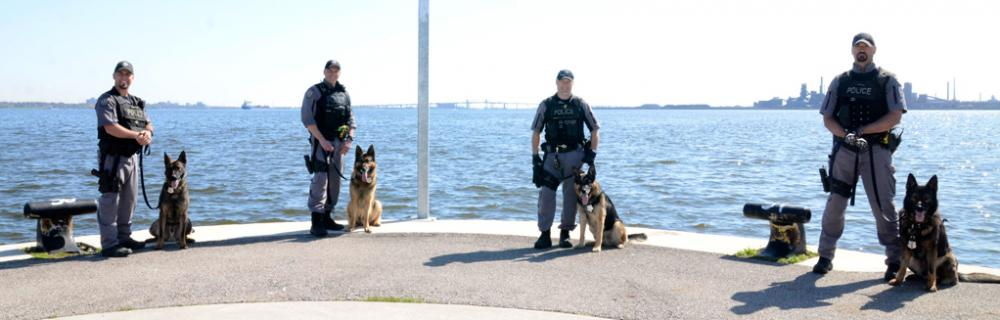 K-9 Unit | Hamilton Police Service
